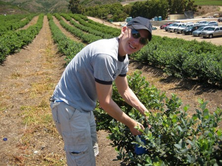 Matt Picking Blueberries