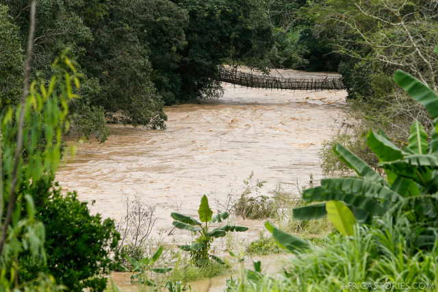 The South Rukuru River was in flood stage as we went. It had recently washed away a concrete bridge about 50 km downstream, but the old bamboo bridge flexed and remained.