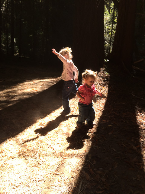 Abigail and Naomi dance in the redwoods